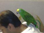 Dharmendra K's profile photo